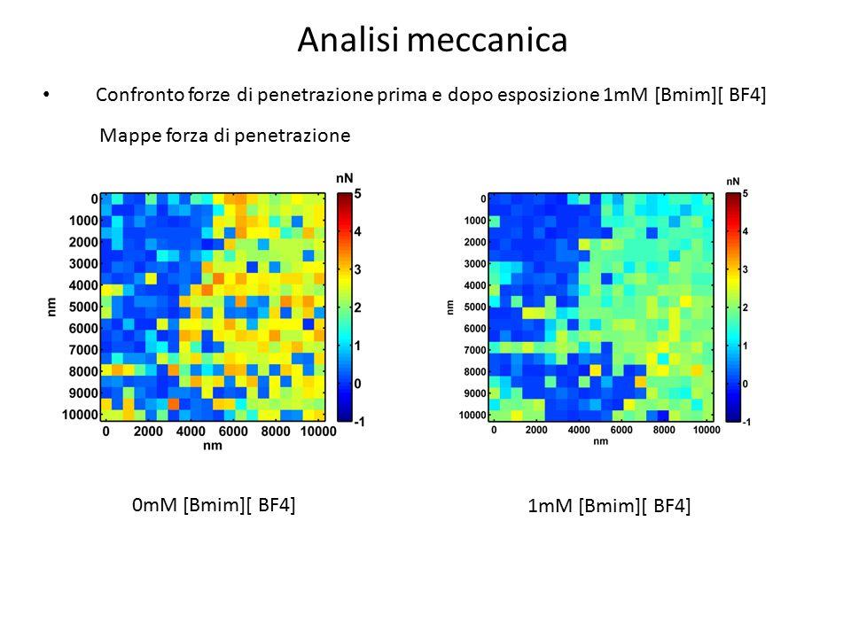 Analisi meccanica Confronto forze di penetrazione prima e dopo esposizione 1mM [Bmim][ BF4] Mappe forza di penetrazione.